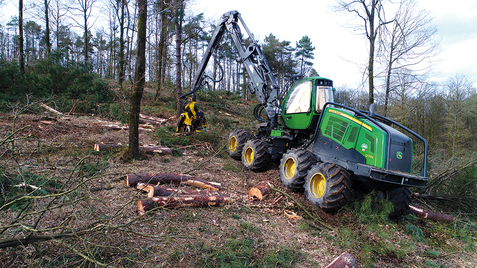 Credit-impot-travaux-forestier-deboisement